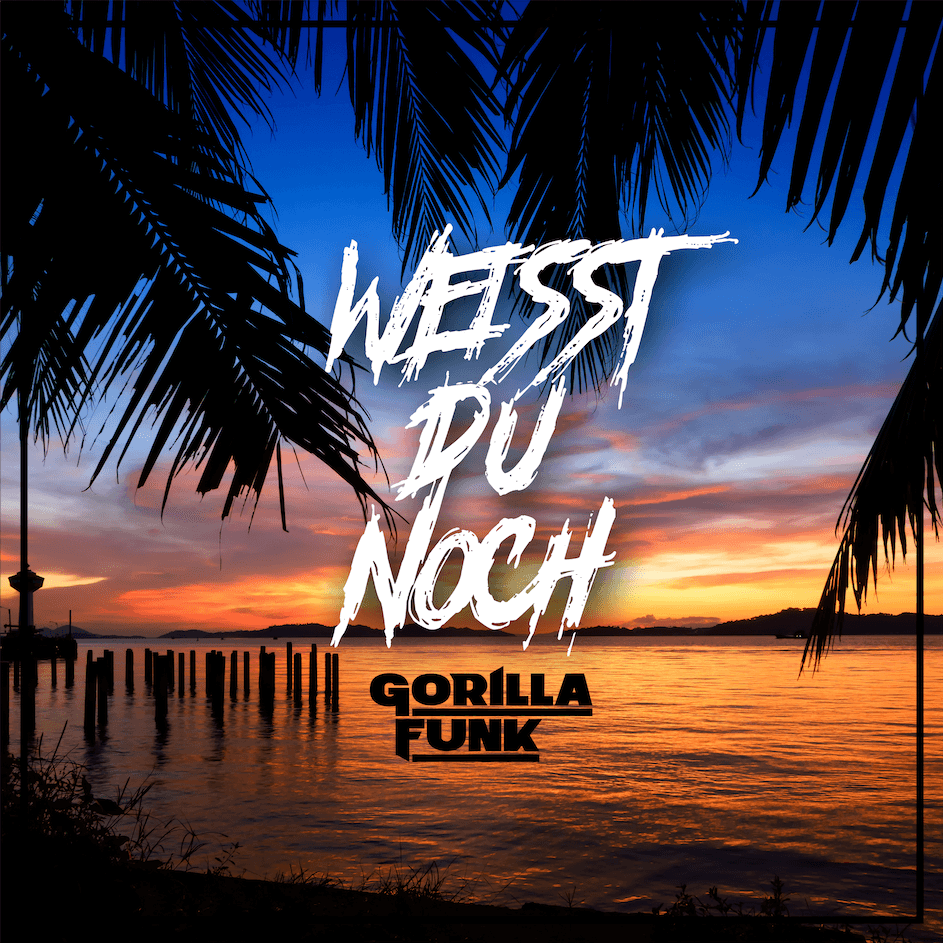 http://gorillafunk.de/wp-content/uploads/2020/04/WDN_cover.png
